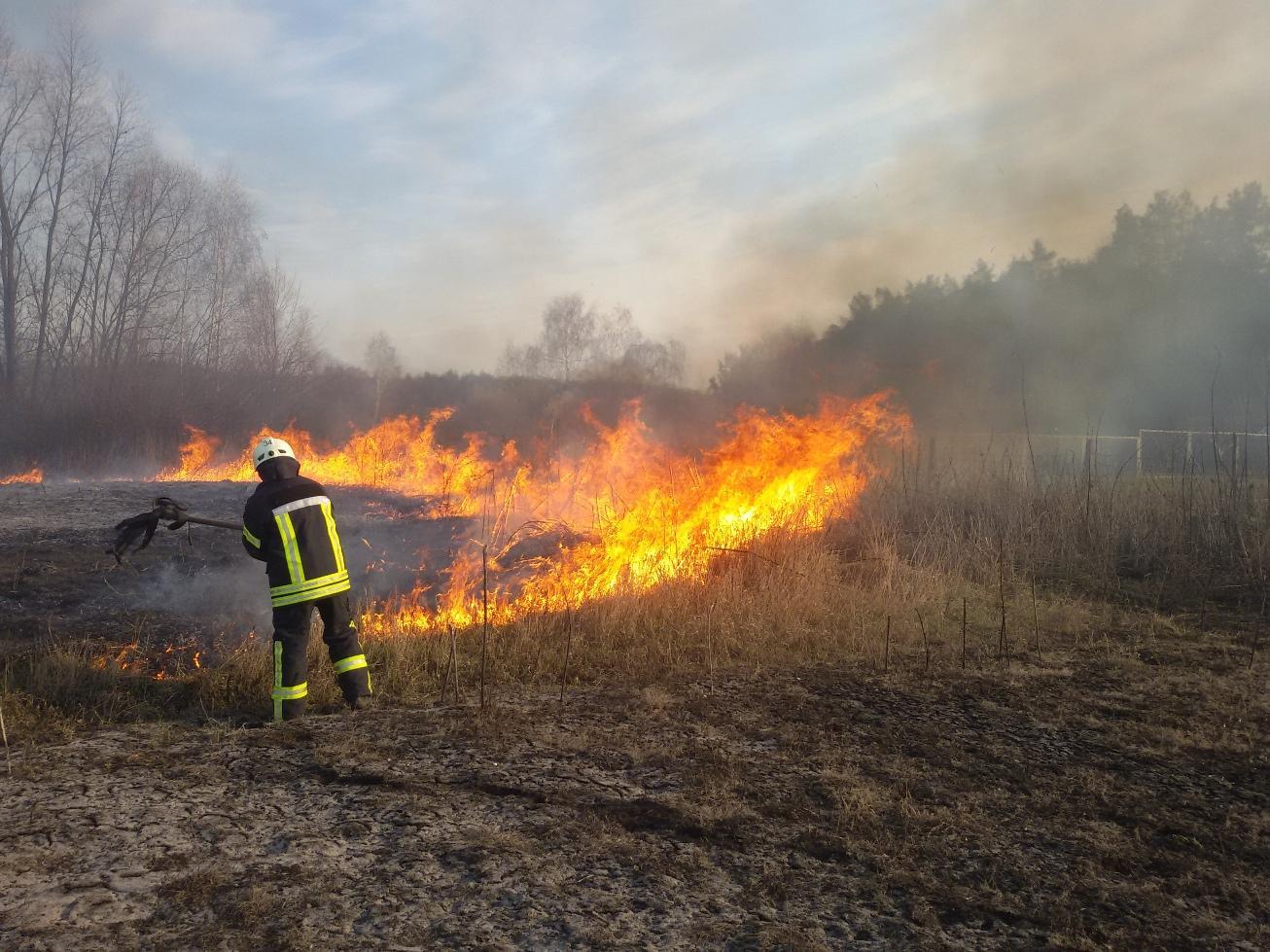 Картинки по запросу горить суха трава